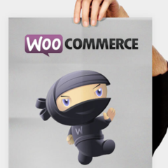 Is Magento Always Better Than WooCommerce