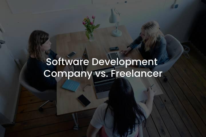 Software Development Company vs. Freelancer (2)